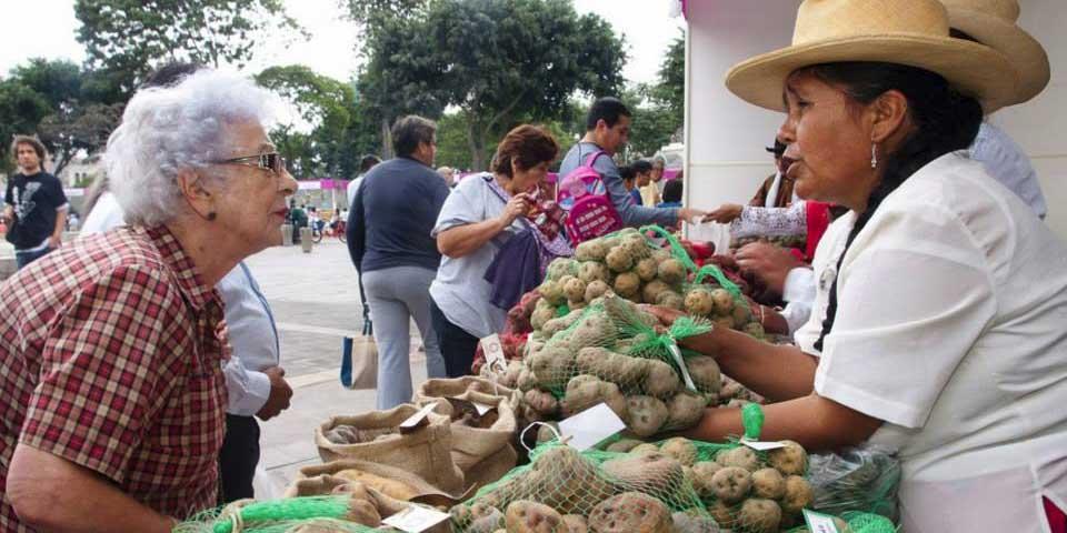 Perun alkuperäiskansojen naiset perunamessuilla Limassa